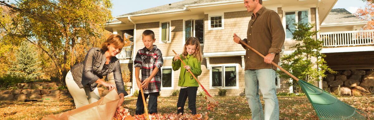 Read more about Selling your house in autumn? Don't fall down on the job!