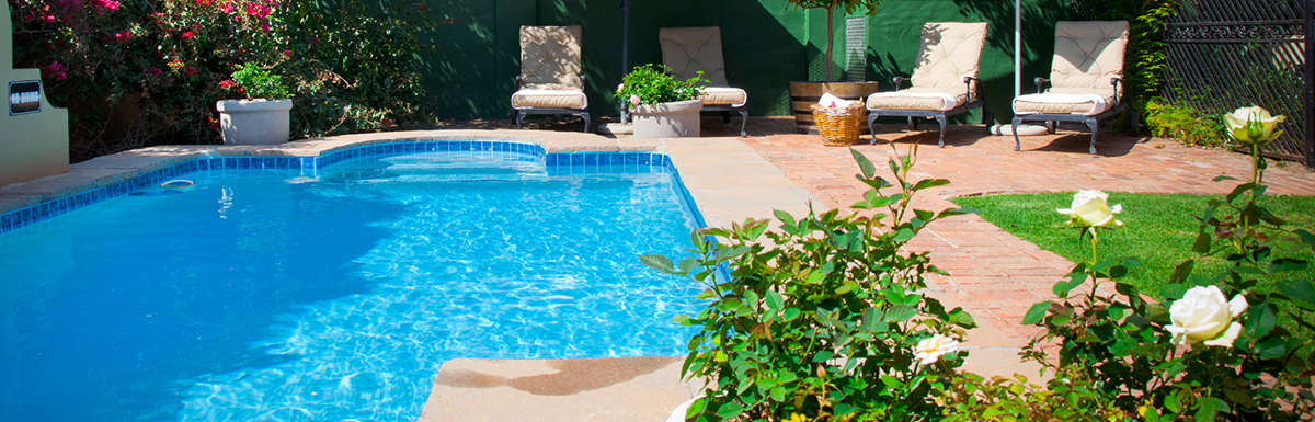 Read more about Planting Around the Pool: Three Foolproof Poolside Landscaping Ideas